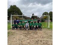 Goalkeeper Wanted Saturday Football Carshalton
