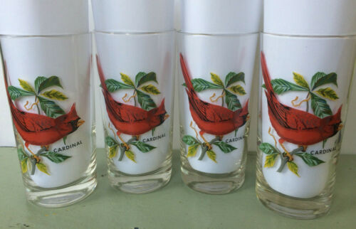 4 Vintage Cardinal Drinking Glasses Red Birds Tropical Foliage Gorgeous! Mint