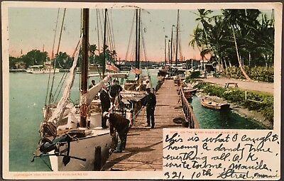 Miami FL ~ Sailboats At Dock Miami River ~ Detroit Postcard #9201 ~ Dade County