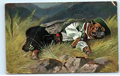 Anthropomorphic Dog in Italian Spanish Clothing? Vintage 1906 Postcard B83