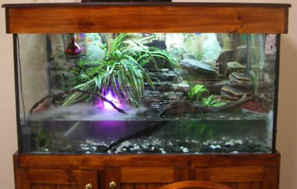 One of a kind reptile tank with storage Bittern Mornington Peninsula Preview