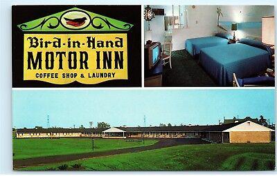Bird-In-Hand PA Bird-In-Hand Motor Inn Motel Route 340 Pennsylvania Postcard A63