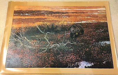 AUTHENTIC ARTAGRAPH OIL PAINTING RAMBLIN GRIZZLY BY ROBERT KUHN SIGNED 200/1000 - $40.00
