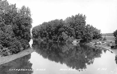 Midland Michigan~Tittabawasee River Bend~Trees Reflect~1940s Real Photo~RPPC (Midland Tree)