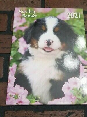 2021 Monthly Desk Planner Appointment Calendar 8.25 X 11 Puppy Cover