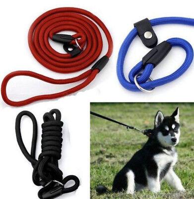 Pet Dog Puppy Nylon Rope Training Walking Leash Slip Lead Strap Traction Collar