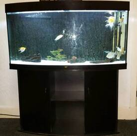 EMPTY 260ltr juwel black fish tank and stand with lights, heater, filter