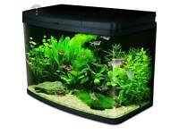 Aquarium Fish Tank & Accessories
