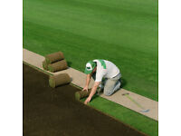 Instant Roll Out Emerald Lawn Turf Grass - order before noon for next day delivery - fresh quality