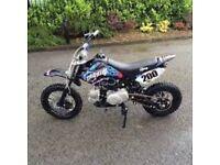 110 pit bike stomp