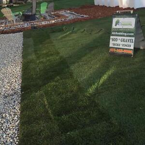 SOD    Deck   Fence  -  $0.99 sqft *** 1000sqft or more **** - Book on line booking