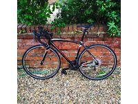 Specialized Allez Road Bike (52cm Frame)