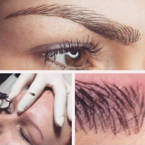 Feathered Cosmetic Eyebrows $350 Woodvale Joondalup Area Preview