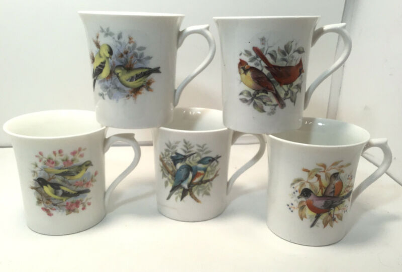 ROSINA - QUEENS Bone China COFFEE CUPS Birds Of America Series 1