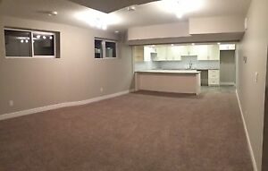 Legal basement suite  Edmonton Edmonton Area image 1