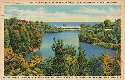 Eastman Park - Postcard Durand Eastman Park Rochester New York