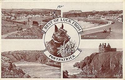 Scotty Dog Multiview, PORTPATRICK, Wigtownshire