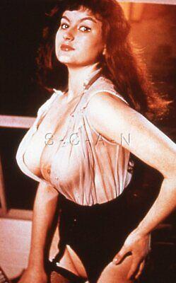 Vintage Nude 50s-60s 35mm Slide / Negative- Super Endowed- Long Hair- Fishnets 3