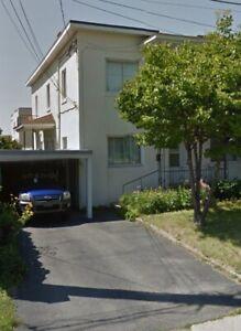 Grand logement
