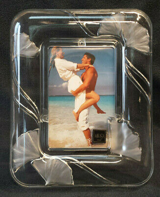 """MIKASA German Made Glass Picture Frame Frosted Ginkgo Motif Leaf 10x8"""" New"""