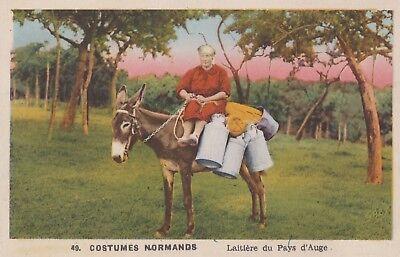 AK Esel - 49. Costumes Normands - Laitière du Pays d'Auge