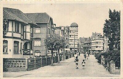 CPA - Belgique - De Panne - La Panne - Avenue des Mouettes