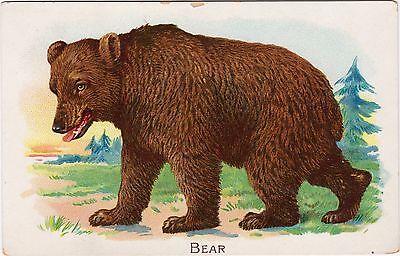 Raphael House Raphael Tuck & Sons Vintage Ephemera Animal Card — The Brown Bear