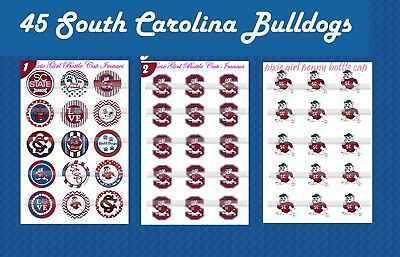 Bull Dogs South Carolina football 45 PRECUT Bottle Cap Images & Cup cake toppers