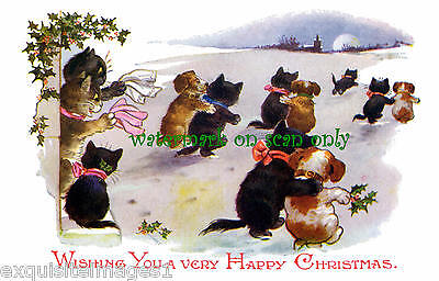 1921 Art~Cute Puppy Dogs & Kitty Cats Skating~Moon~NEW Christmas Note Cards