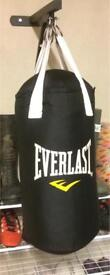 Everlast boxing bag with gloves and mount