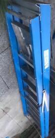 8step Glass fibre ladder