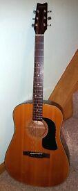 Old Washburn Acoustic Guitar - Dreadnaught D 10 N