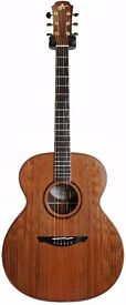 Avalon - Professional Series Acoustic Guitar