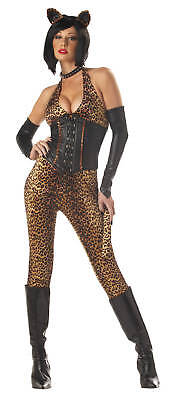 Dressed to Kill Safari Leopard Cheetah Cat Women Adult Costume (Adult Catwoman Costume)