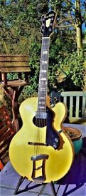 Very Rare. 1979 Hagstrom Oval Hole Jimmy, Designed By D'Aquisto . Made in Sweden. Superb Condition