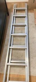 Ladder ( extending)