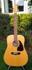 1980's Aria Acoustic with pickup system and bag