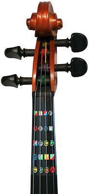 Learn how  to play HALF (1/2) size violin with Fretless Finger Guides™