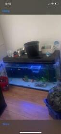 380L fish tank
