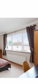 Lined eyelet curtains with matching tie backs