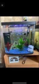 95 litre fish tank filter inc