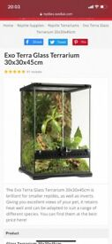 Small glass vivarium