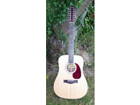 Farida D-5212E Steve Hacket 12 String Guitar Electro Acoustic