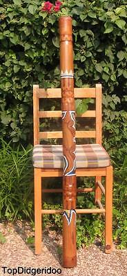 "47""  120cm Aboriginal DIDGERIDOO Hand-Carved & Dot-Painted Lizard +Bag +BeesWax"