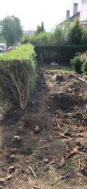 RH Landscape Gardening and Pressure Washing