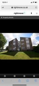 Large one bed flat in Braintree