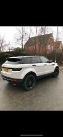 Stunning Range Rover Evoque! You won't find another like it