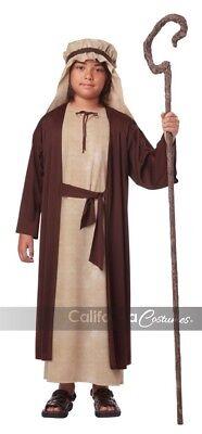 California Costume Saint Joseph Religious Biblical Figure Child Costume 00439 (Saint Costumes)