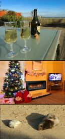 REDUCED SPEND CHRISTMAS with a view of the sea Norfolk dog friendly holiday cottage WINTERTON-ON-SEA