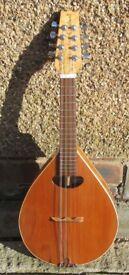mandolin handmade